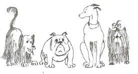 dog_poster