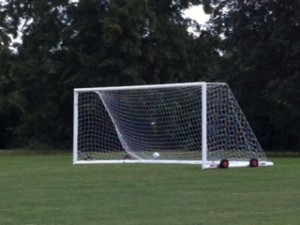 One of the New Goals