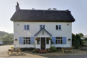 hare-hounds-2
